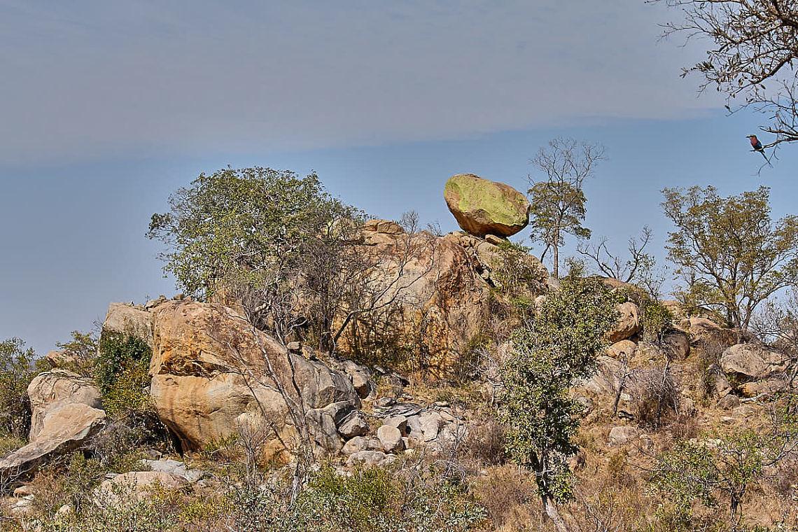 Foto: Felsformation und Vögelchen